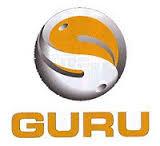 logo_Guru